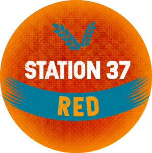 Jeffreys Bay Brewery on the Beach Station 37 Red